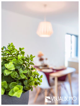 Home Staging Detail Pflanze Essbereich