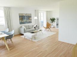 moderner Wohn- Essbereich 3D Home Staging